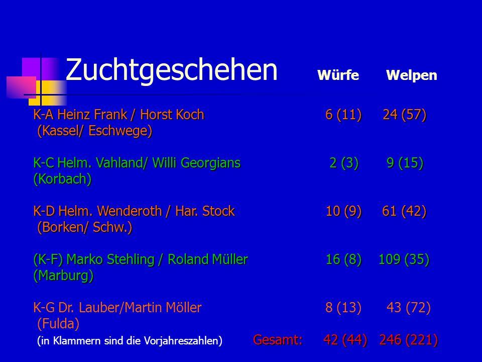 Zuchtgeschehen Würfe Welpen K-A Heinz Frank / Horst Koch 6 (11) 24 (57) (Kassel/ Eschwege) K-C Helm. Vahland/ Willi Georgians 2 (3) 9 (15) (Korbach) K
