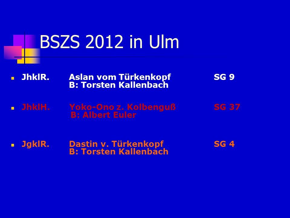 BSZS 2012 in Ulm JhklR. Aslan vom TürkenkopfSG 9 B: Torsten Kallenbach JhklH. Yoko-Ono z. Kolbenguß SG 37 B: Albert Euler JgklR. Dastin v. TürkenkopfS
