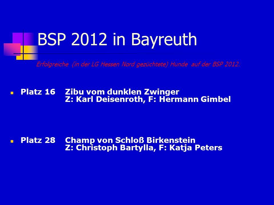 BSP 2012 in Bayreuth Erfolgreiche (in der LG Hessen Nord gezüchtete) Hunde auf der BSP 2012. Platz 16 Zibu vom dunklen Zwinger Z: Karl Deisenroth, F: