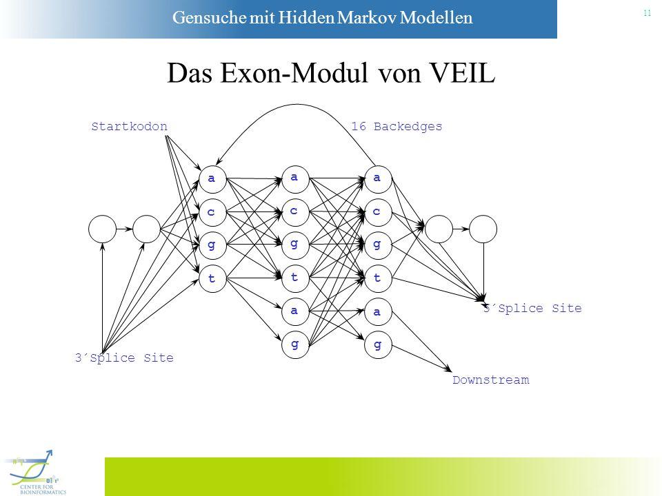Gensuche mit Hidden Markov Modellen 10 Das Intron-Modul von VEIL a c g t a c g t a c g t 5´Splice Site 3´Splice Site 16 Backedges Anpassung des Readin