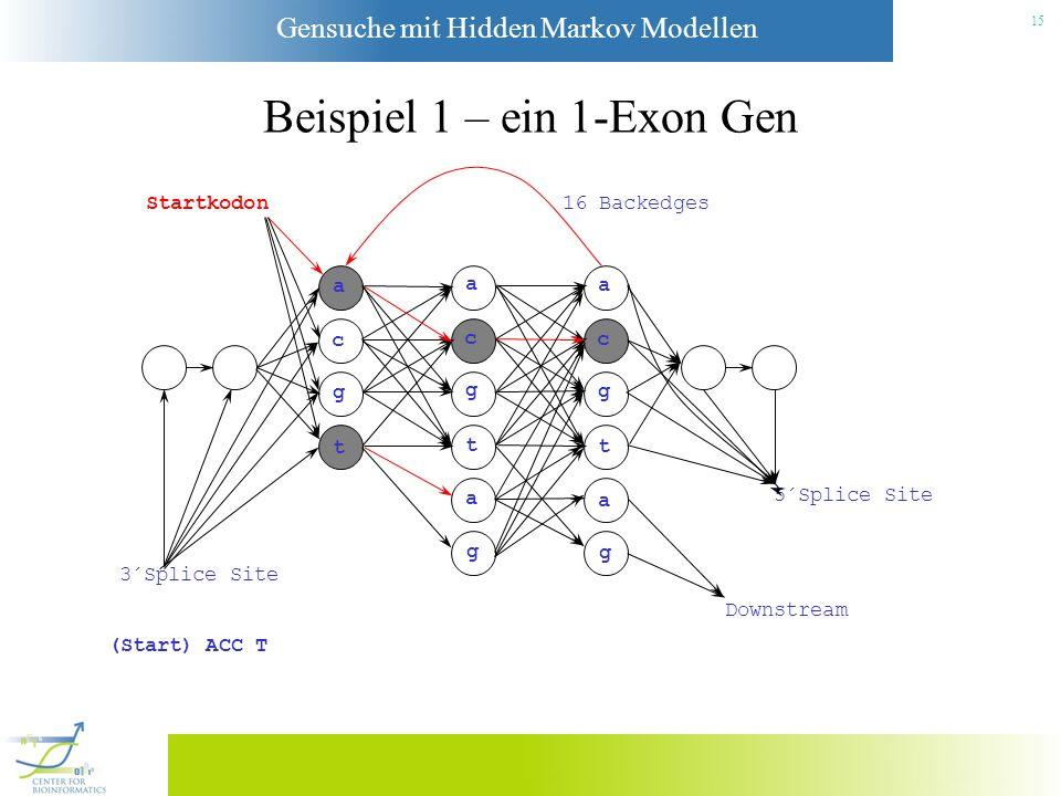 Gensuche mit Hidden Markov Modellen 14 Beispiel 1 – ein 1-Exon Gen Startkodon a c g t a c g t a g a c g t a g 3´Splice Site Downstream 5´Splice Site 1