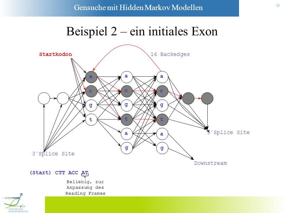 Gensuche mit Hidden Markov Modellen 18 Beispiel 2 – ein initiales Exon Startkodon a c g t a c g t a g a c g t a g 3´Splice Site Downstream 5´Splice Si