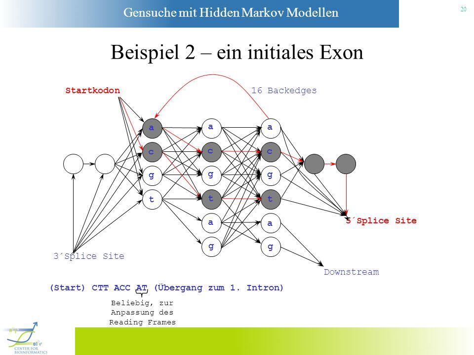Gensuche mit Hidden Markov Modellen 19 Beispiel 2 – ein initiales Exon Startkodon a c g t a c g t a g a c g t a g 3´Splice Site Downstream 5´Splice Si