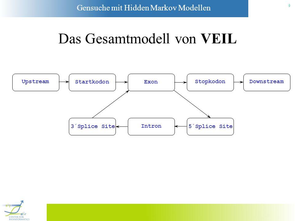 Gensuche mit Hidden Markov Modellen 9 Das Gesamtmodell von VEIL Upstream StartkodonExon Stopkodon Downstream 3´Splice Site Intron 5´Splice Site