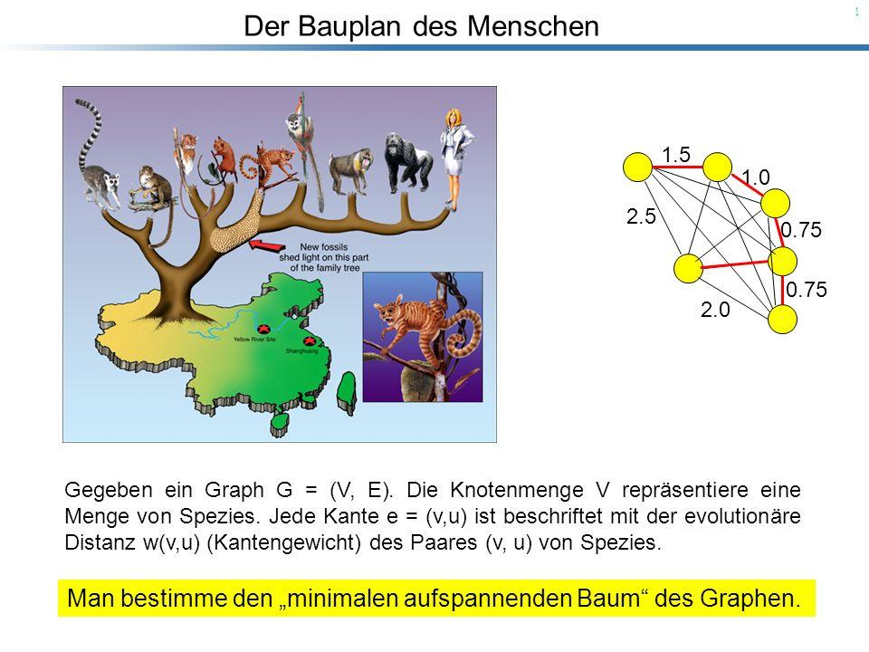 Der Bauplan des Menschen 12 Kruskals Algorithmus zur Berechnung eines MST: Start: Jeder Knoten ist ein Baum (eine Menge).