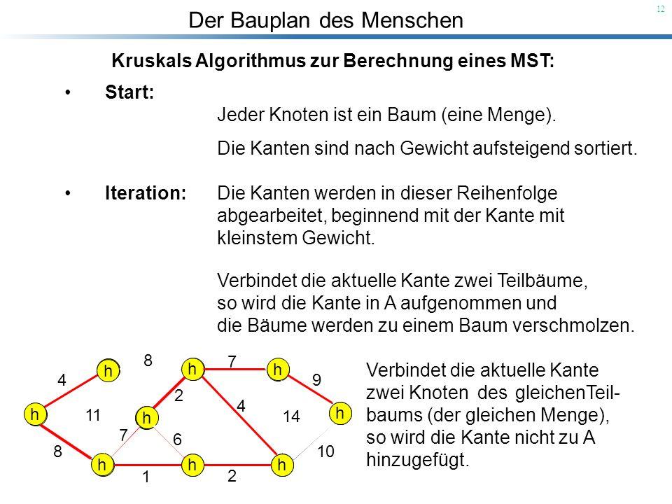 Der Bauplan des Menschen 12 Kruskals Algorithmus zur Berechnung eines MST: Start: Jeder Knoten ist ein Baum (eine Menge). Die Kanten sind nach Gewicht