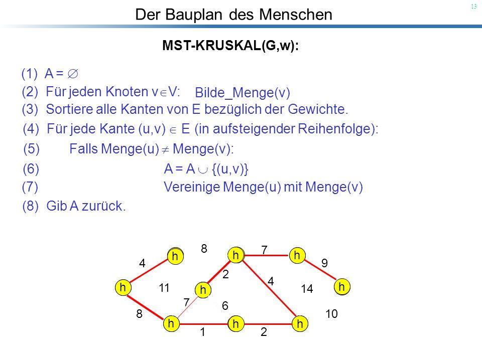 Der Bauplan des Menschen 13 MST-KRUSKAL(G,w): (1) A = (2) Für jeden Knoten v V: (5) Falls Menge(u) Menge(v): (3) Sortiere alle Kanten von E bezüglich