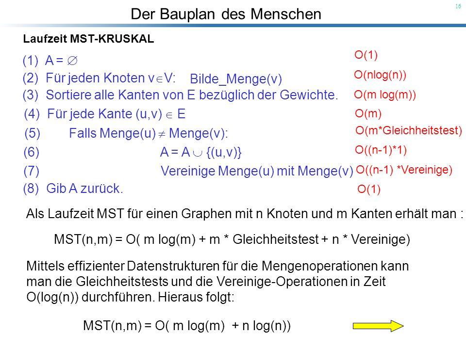 Der Bauplan des Menschen 16 Laufzeit MST-KRUSKAL O(1) O(nlog(n)) O(m log(m)) O(m) O(m*Gleichheitstest) O((n-1)*1) O((n-1) *Vereinige) O(1) Als Laufzei