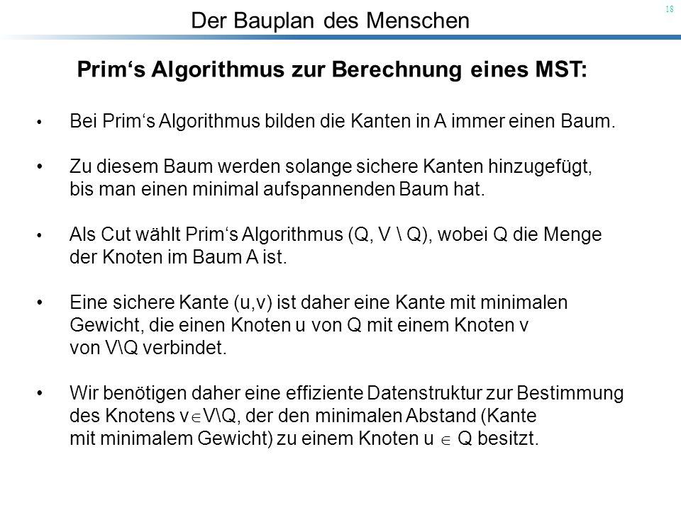 Der Bauplan des Menschen 18 Prims Algorithmus zur Berechnung eines MST: Bei Prims Algorithmus bilden die Kanten in A immer einen Baum. Zu diesem Baum