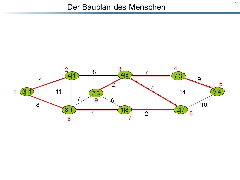 Der Bauplan des Menschen 23 |-1 4 8 11 8 7 9 10 14 2 1 7 6 2 4 1 2 3 4 5 6 7 8 9 0|-1 4|1 8|1 4|1 8|2 8|1 7|8 1|8 7|3 2|3 9|4 2|7 4|6