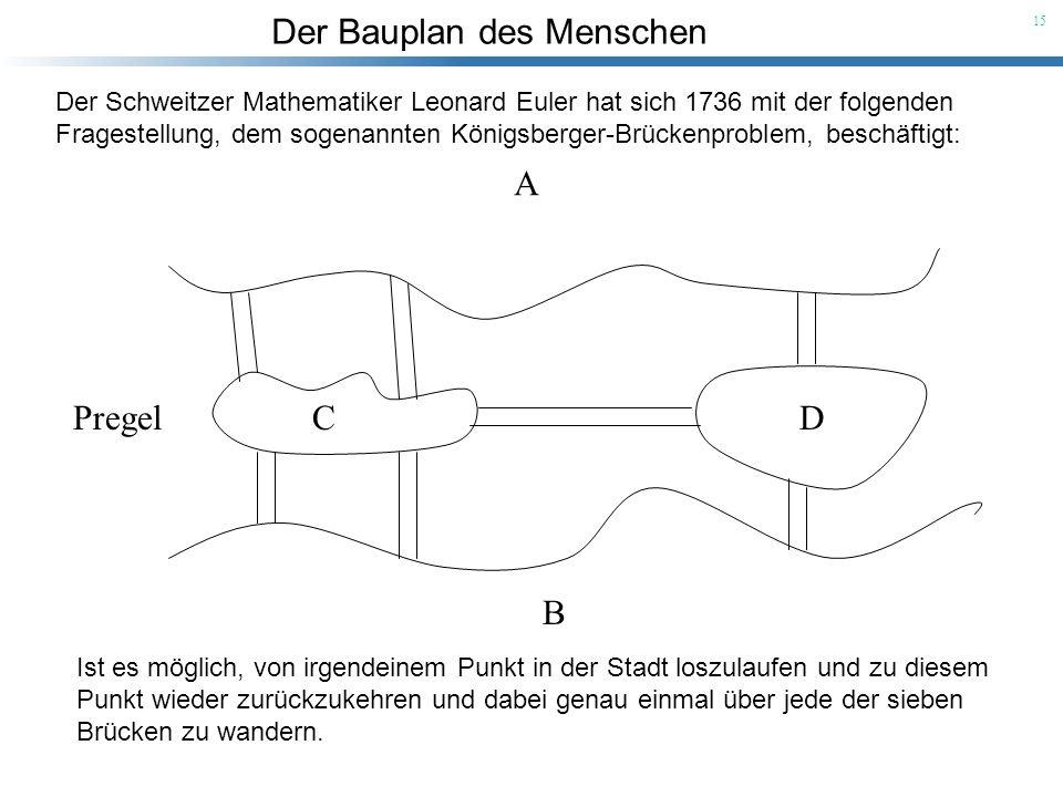 Der Bauplan des Menschen 15 Der Schweitzer Mathematiker Leonard Euler hat sich 1736 mit der folgenden Fragestellung, dem sogenannten Königsberger-Brüc