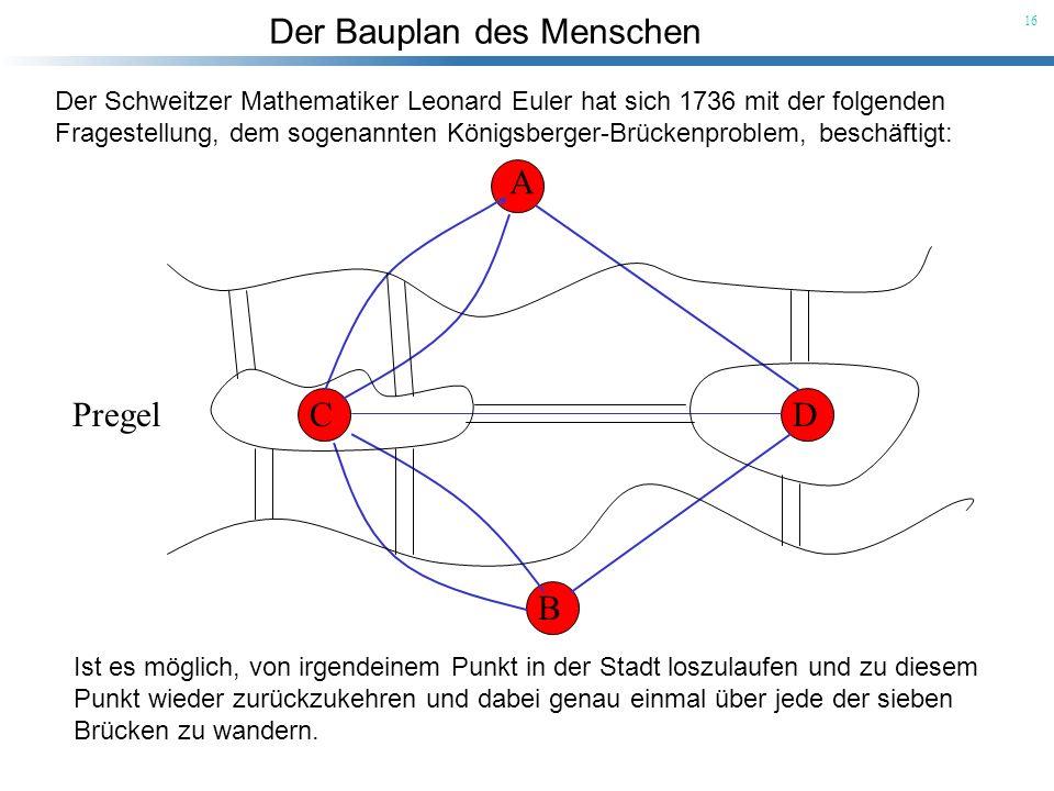 Der Bauplan des Menschen 16 A B CDPregel Der Schweitzer Mathematiker Leonard Euler hat sich 1736 mit der folgenden Fragestellung, dem sogenannten Köni