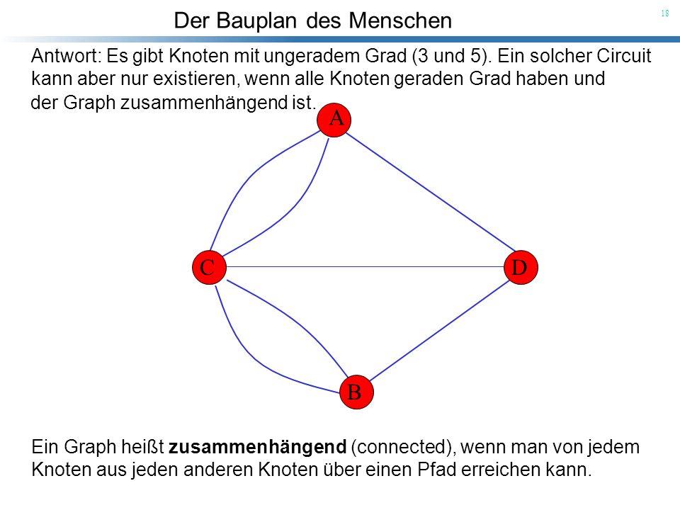 Der Bauplan des Menschen 18 A B CD Antwort: Es gibt Knoten mit ungeradem Grad (3 und 5). Ein solcher Circuit kann aber nur existieren, wenn alle Knote