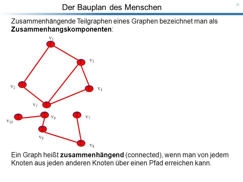 Der Bauplan des Menschen 19 Ein Graph heißt zusammenhängend (connected), wenn man von jedem Knoten aus jeden anderen Knoten über einen Pfad erreichen