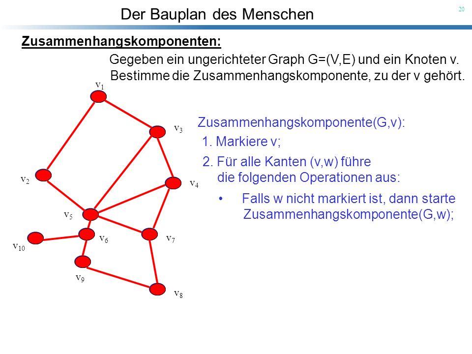 Der Bauplan des Menschen 20 v1v1 v3v3 v2v2 v4v4 v5v5 v6v6 v7v7 v8v8 v9v9 v 10 Zusammenhangskomponenten: Gegeben ein ungerichteter Graph G=(V,E) und ei