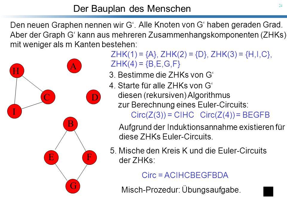 Der Bauplan des Menschen 24 A B CD EF G H I Den neuen Graphen nennen wir G. Alle Knoten von G haben geraden Grad. Aber der Graph G kann aus mehreren Z