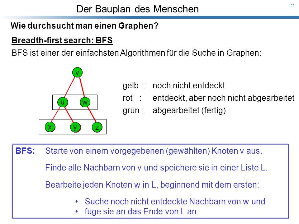 Der Bauplan des Menschen 27 Wie durchsucht man einen Graphen? Breadth-first search: BFS BFS ist einer der einfachsten Algorithmen für die Suche in Gra