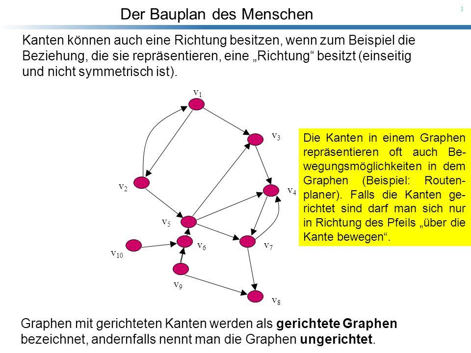 Der Bauplan des Menschen 3 Kanten können auch eine Richtung besitzen, wenn zum Beispiel die Beziehung, die sie repräsentieren, eine Richtung besitzt (