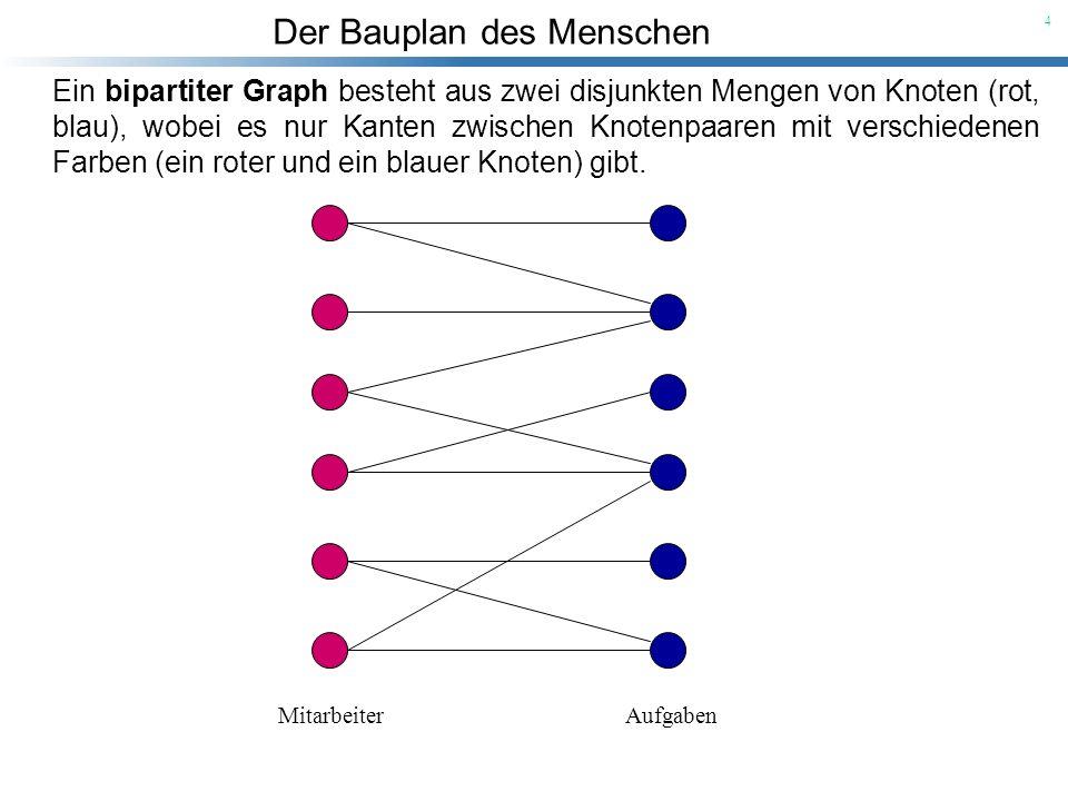 Der Bauplan des Menschen 4 Ein bipartiter Graph besteht aus zwei disjunkten Mengen von Knoten (rot, blau), wobei es nur Kanten zwischen Knotenpaaren m