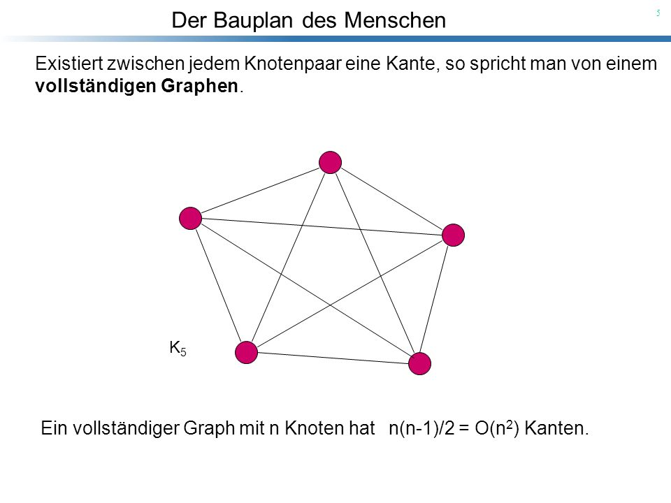 Der Bauplan des Menschen 5 Existiert zwischen jedem Knotenpaar eine Kante, so spricht man von einem vollständigen Graphen. K5K5 Ein vollständiger Grap
