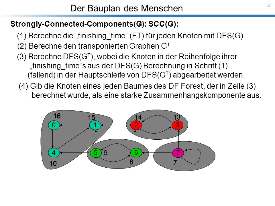 Der Bauplan des Menschen 55 0 4 1 5 6 23 7 0 4 1 5 6 23 7 7 13 9 8 14 10 15 16 Strongly-Connected-Components(G): SCC(G): (1) Berechne die finishing_ti