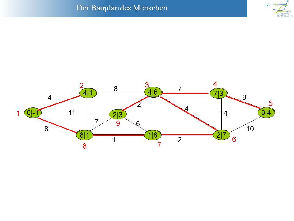 Der Bauplan des Menschen 19 |-1 4 8 11 8 7 9 10 14 2 1 7 6 2 4 1 2 3 4 5 6 7 8 9 0|-1 4|1 8|1 4|1 8|2 8|1 7|8 1|8 7|3 2|3 9|4 2|7 4|6