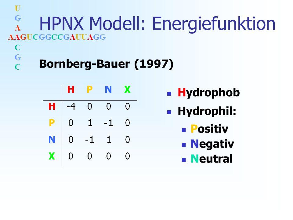AAGUCGGCCGAUUAGG UGACGCUGACGC HPNX Modell: Energiefunktion Hydrophob Positiv Negativ Neutral Hydrophil: Bornberg-Bauer (1997)