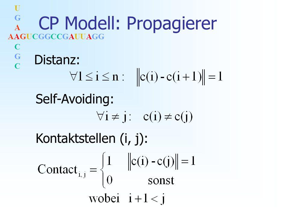 AAGUCGGCCGAUUAGG UGACGCUGACGC CP Modell: Propagierer Distanz: Self-Avoiding: Kontaktstellen (i, j):