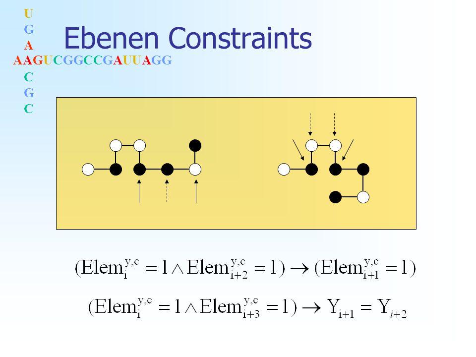 AAGUCGGCCGAUUAGG UGACGCUGACGC Ebenen Constraints