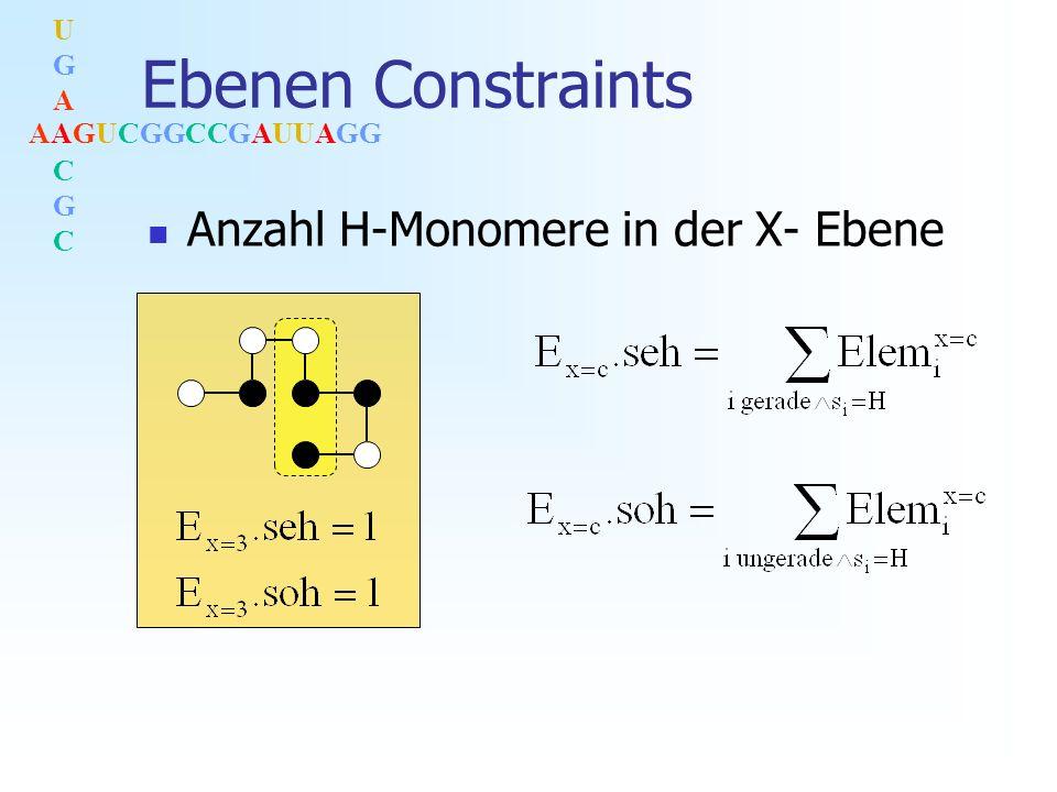 AAGUCGGCCGAUUAGG UGACGCUGACGC Ebenen Constraints Anzahl H-Monomere in der X- Ebene