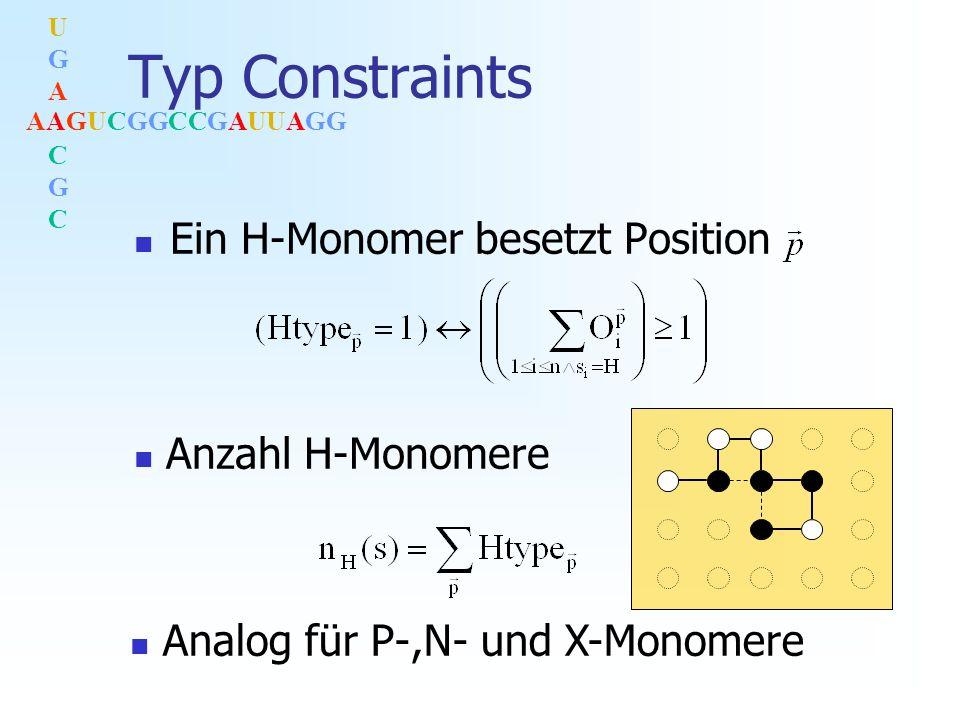 AAGUCGGCCGAUUAGG UGACGCUGACGC Typ Constraints Ein H-Monomer besetzt Position Anzahl H-Monomere Analog für P-,N- und X-Monomere
