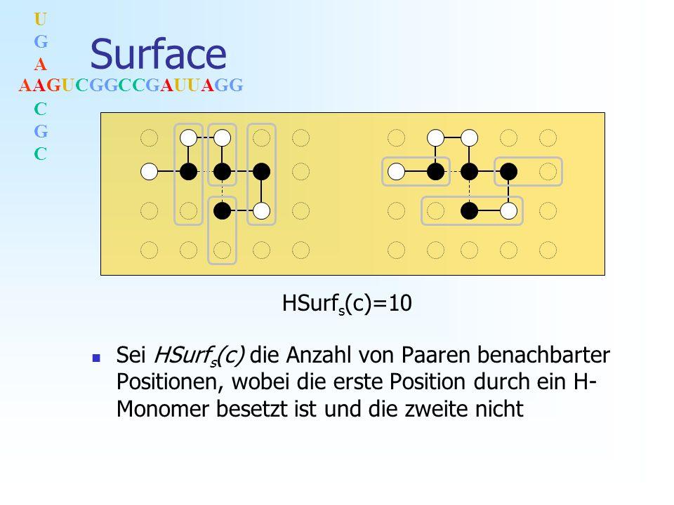 AAGUCGGCCGAUUAGG UGACGCUGACGC Surface Sei HSurf s (c) die Anzahl von Paaren benachbarter Positionen, wobei die erste Position durch ein H- Monomer besetzt ist und die zweite nicht HSurf s (c)=10