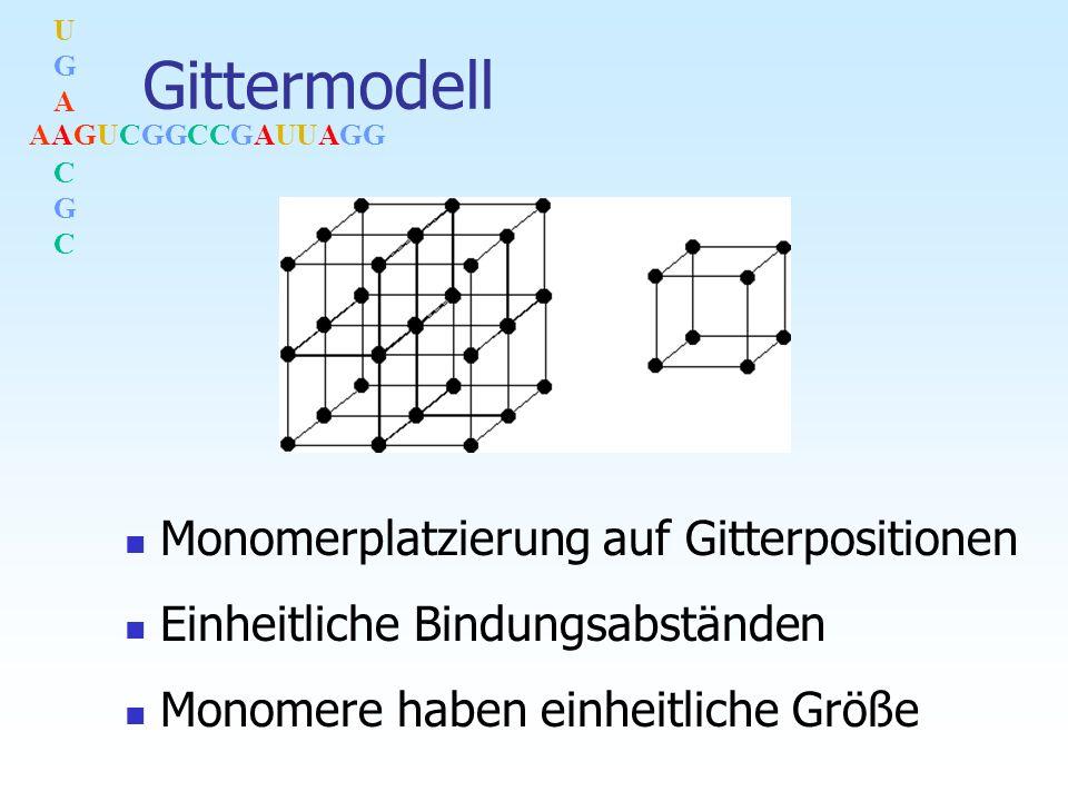 AAGUCGGCCGAUUAGG UGACGCUGACGC Gittermodell Monomerplatzierung auf Gitterpositionen Einheitliche Bindungsabständen Monomere haben einheitliche Größe