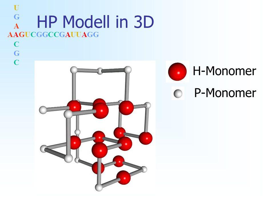 AAGUCGGCCGAUUAGG UGACGCUGACGC HP Modell: Nachteil Hoher Degenerierungsgrad Viele Strukturen zu einer Sequenz mit min.