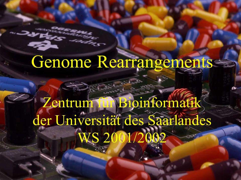 Genome Rearrangements Zentrum für Bioinformatik der Universität des Saarlandes WS 2001/2002