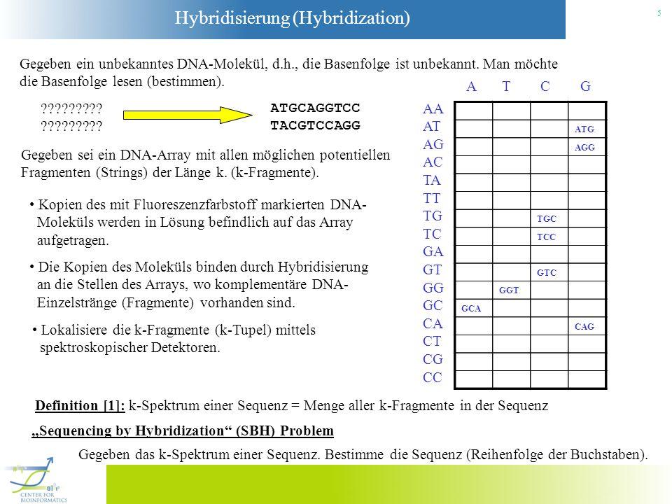 Hybridisierung (Hybridization) 5 Gegeben ein unbekanntes DNA-Molekül, d.h., die Basenfolge ist unbekannt. Man möchte die Basenfolge lesen (bestimmen).