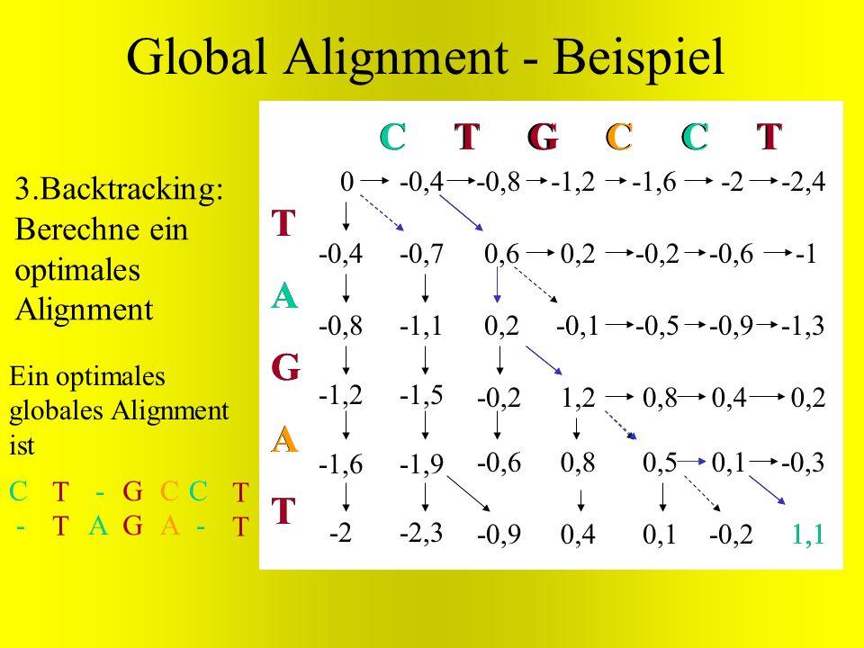 0,2 -0,2 -0,6 -0,9 TAGATTAGAT C T G C C T 0 -0,1 1,2 0,8 0,4 0,8 0,5 0,1 0,4 0,1 -0,2 0,2 -0,3 1,1 G G A 0,6 T T 1,1 T TCC A Ein optimales globales Al