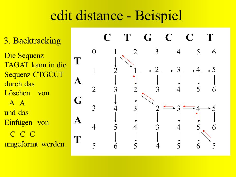 TAGATTAGAT C T G C C T edit distance - Beispiel 012345012345 2345623456 1234512345 32343234 43454345 54565456 65656565 3. Backtracking Löschen A Einfü