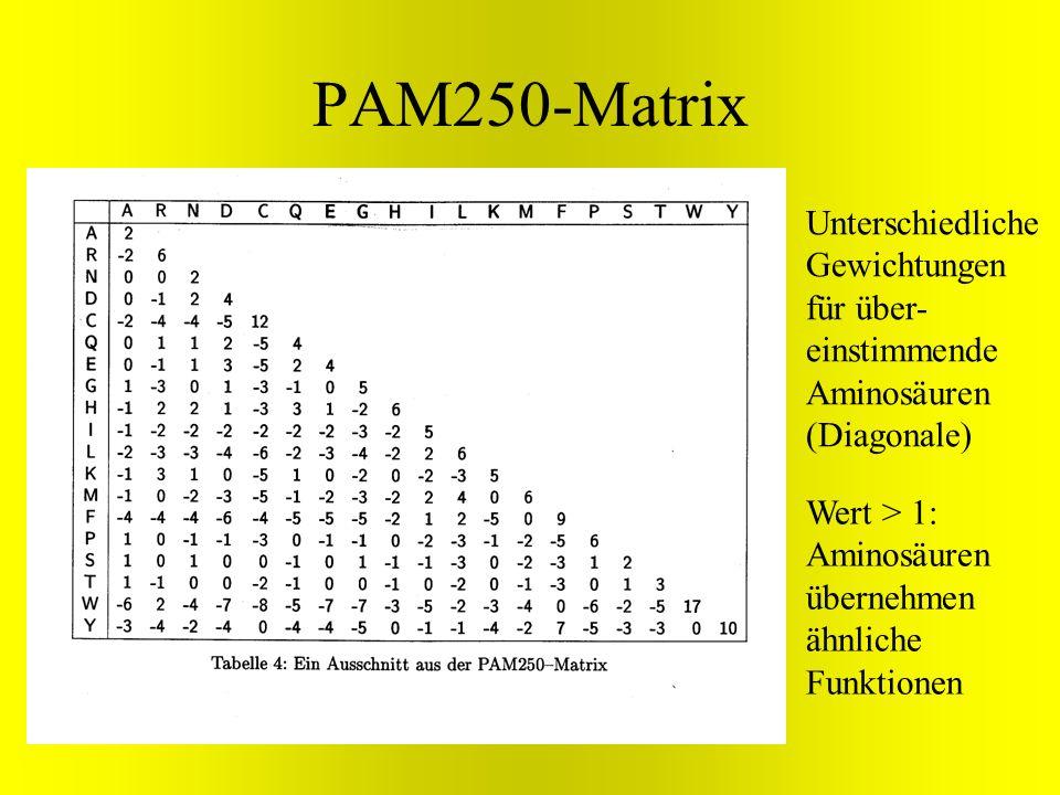 PAM250-Matrix Unterschiedliche Gewichtungen für über- einstimmende Aminosäuren (Diagonale) Wert > 1: Aminosäuren übernehmen ähnliche Funktionen