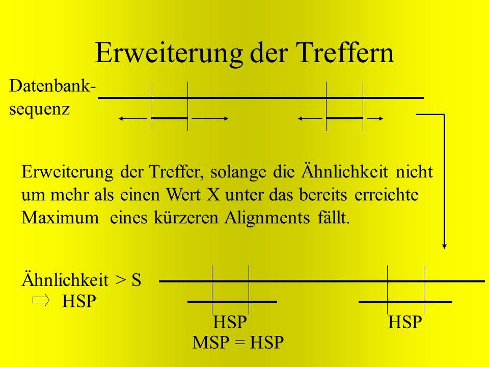 Erweiterung der Treffern Datenbank- sequenz Erweiterung der Treffer, solange die Ähnlichkeit nicht um mehr als einen Wert X unter das bereits erreicht