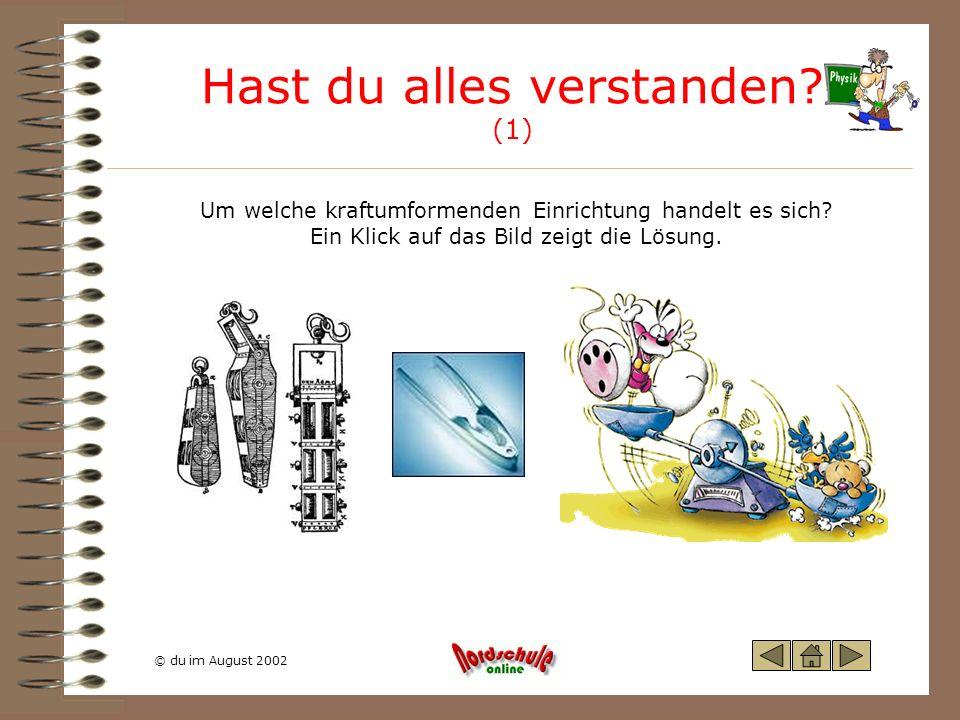 © du im August 2002 Hast du alles verstanden? (1) Um welche kraftumformenden Einrichtung handelt es sich? Ein Klick auf das Bild zeigt die Lösung.