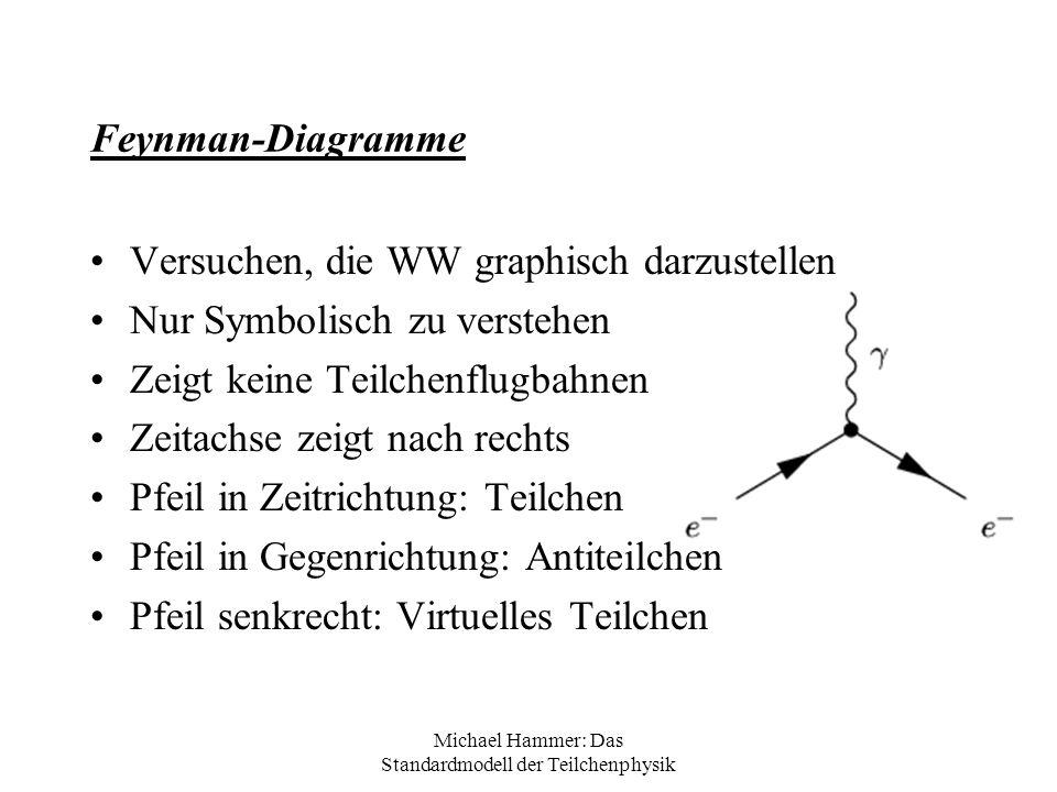 Michael Hammer: Das Standardmodell der Teilchenphysik Feynman-Diagramme Versuchen, die WW graphisch darzustellen Nur Symbolisch zu verstehen Zeigt kei