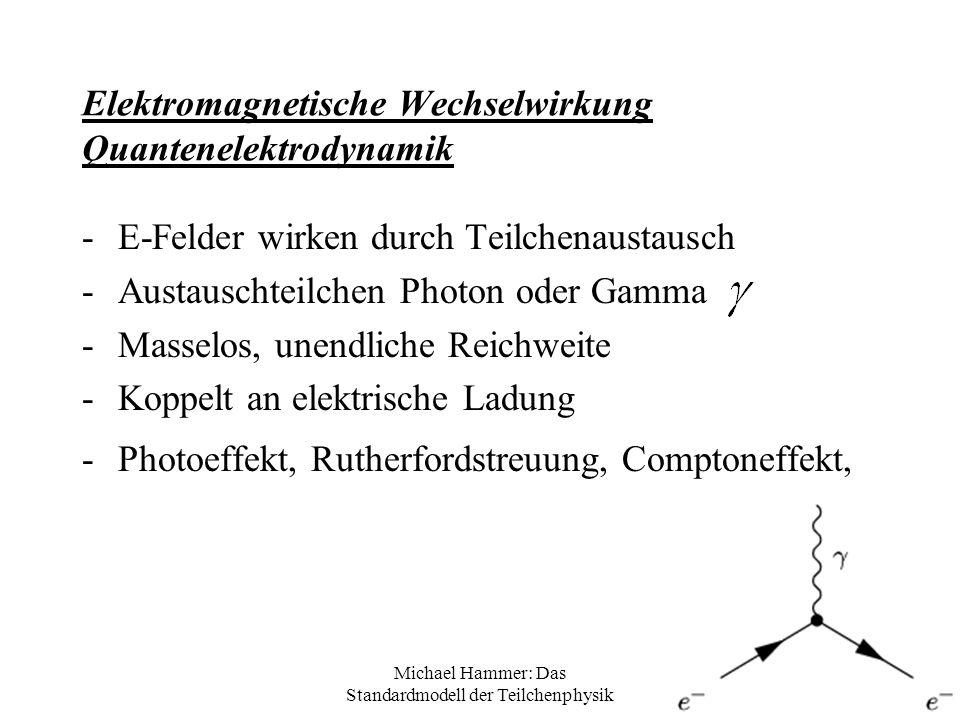 Michael Hammer: Das Standardmodell der Teilchenphysik Elektromagnetische Wechselwirkung Quantenelektrodynamik -E-Felder wirken durch Teilchenaustausch