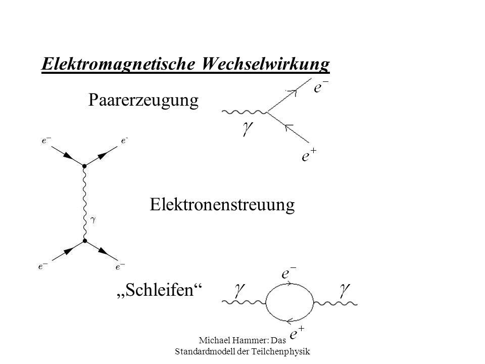 Michael Hammer: Das Standardmodell der Teilchenphysik Elektromagnetische Wechselwirkung Paarerzeugung Schleifen Elektronenstreuung