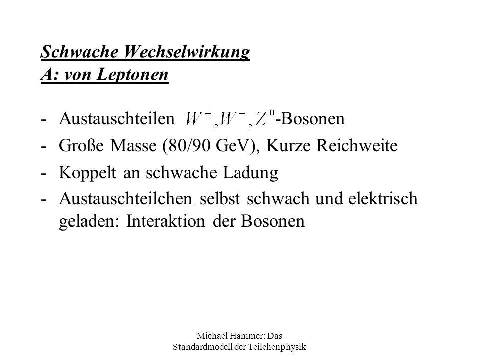Michael Hammer: Das Standardmodell der Teilchenphysik Schwache Wechselwirkung A: von Leptonen -Austauschteilen -Bosonen -Große Masse (80/90 GeV), Kurz