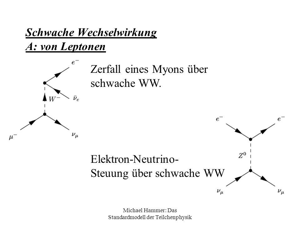 Michael Hammer: Das Standardmodell der Teilchenphysik Schwache Wechselwirkung A: von Leptonen Zerfall eines Myons über schwache WW. Elektron-Neutrino-