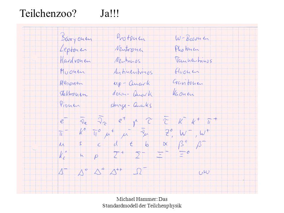Michael Hammer: Das Standardmodell der Teilchenphysik Feynman-Diagramme Versuchen, die WW graphisch darzustellen Nur Symbolisch zu verstehen Zeigt keine Teilchenflugbahnen Zeitachse zeigt nach rechts Pfeil in Zeitrichtung: Teilchen Pfeil in Gegenrichtung: Antiteilchen Pfeil senkrecht: Virtuelles Teilchen