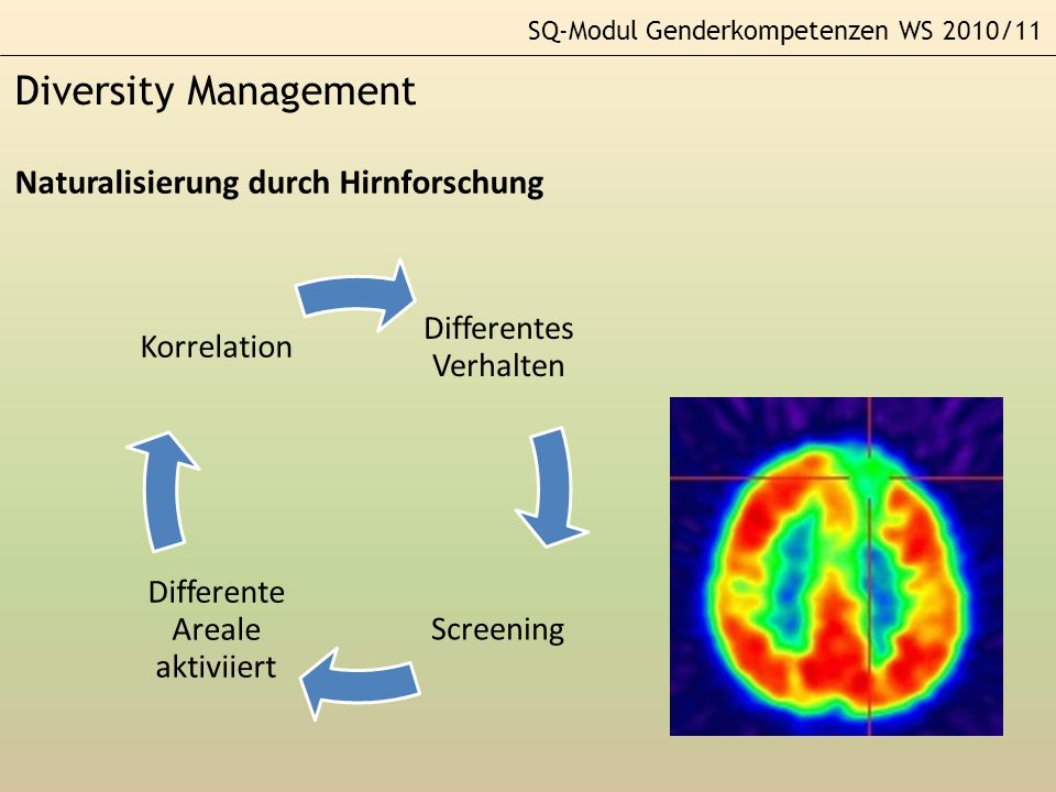 SQ-Modul Genderkompetenzen WS 2010/11 Diversity Management Naturalisierung durch Hirnforschung Differentes Verhalten Screening Differente Areale aktiv