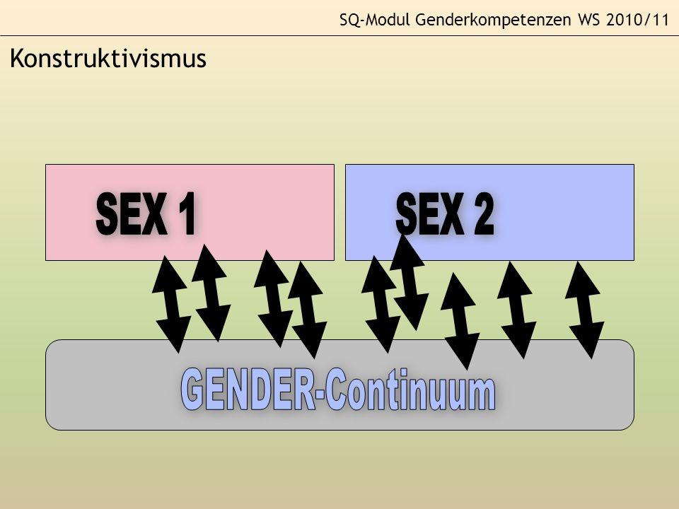 SQ-Modul Genderkompetenzen WS 2010/11 Konstruktivismus