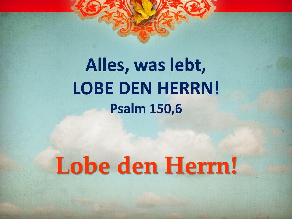 Alles, was lebt, LOBE DEN HERRN! Psalm 150,6 Lobe den Herrn!